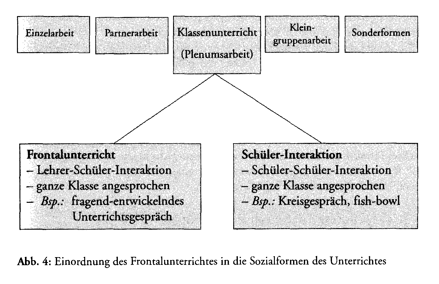 diskrete modellierung uni frankfurt