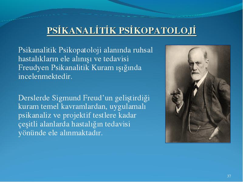 the development of sigmund freuds theories Comparison between the theories of sigmund freud and jean piaget freud's stages of development says development affects a person's future focuses on erogenous zones and their developments.