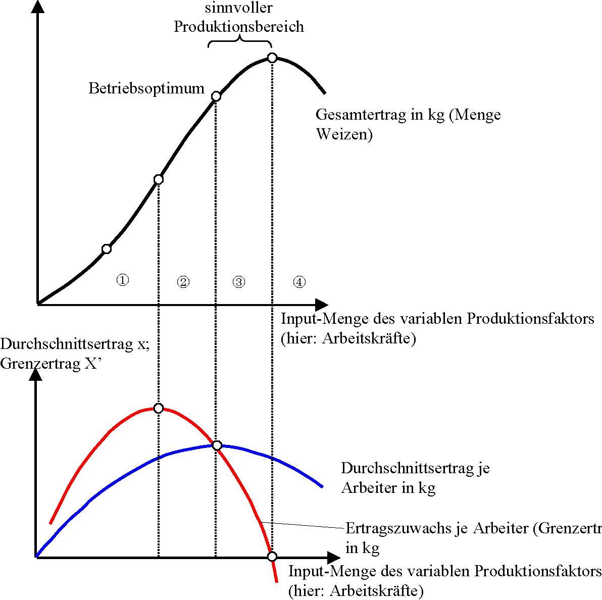 Üretim Sermayesi: Tanımı, Fonksiyonları ve Özellikleri